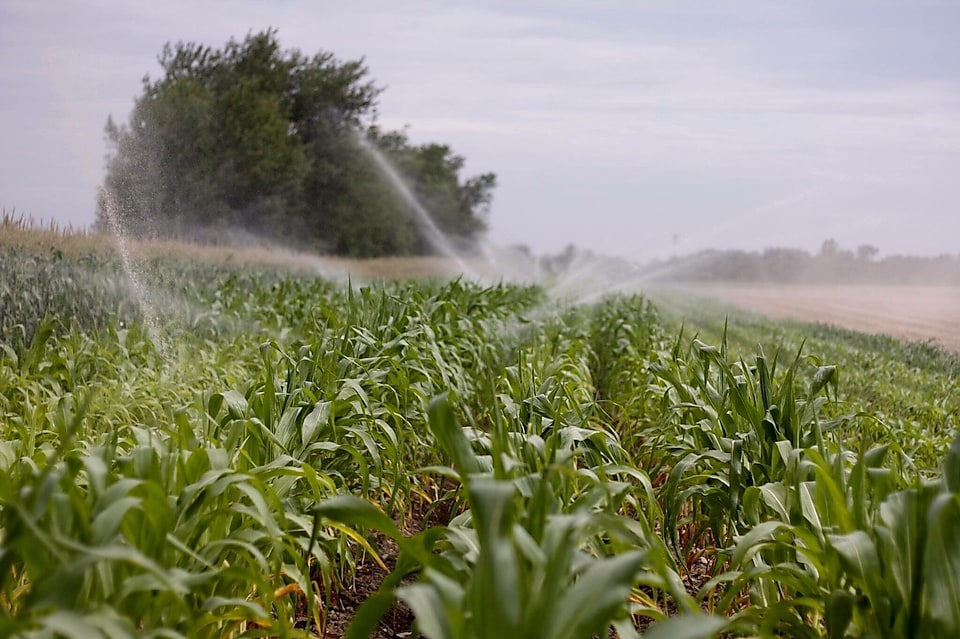 A field in a farm is watered